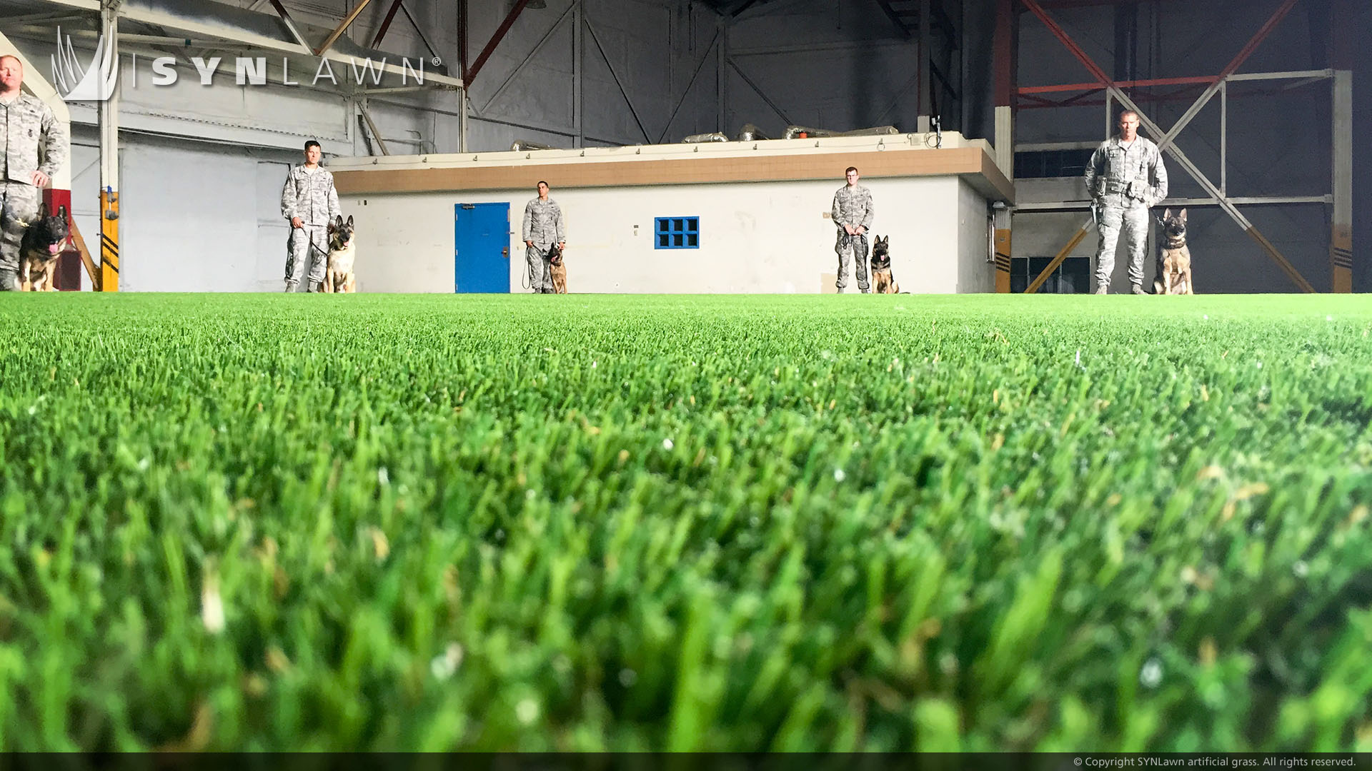 pet turf for military training