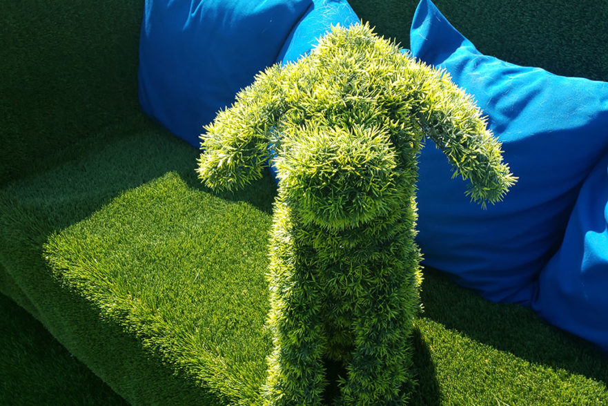 affordable pet turf