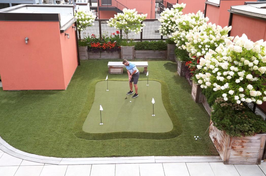 putting golf, residential yard