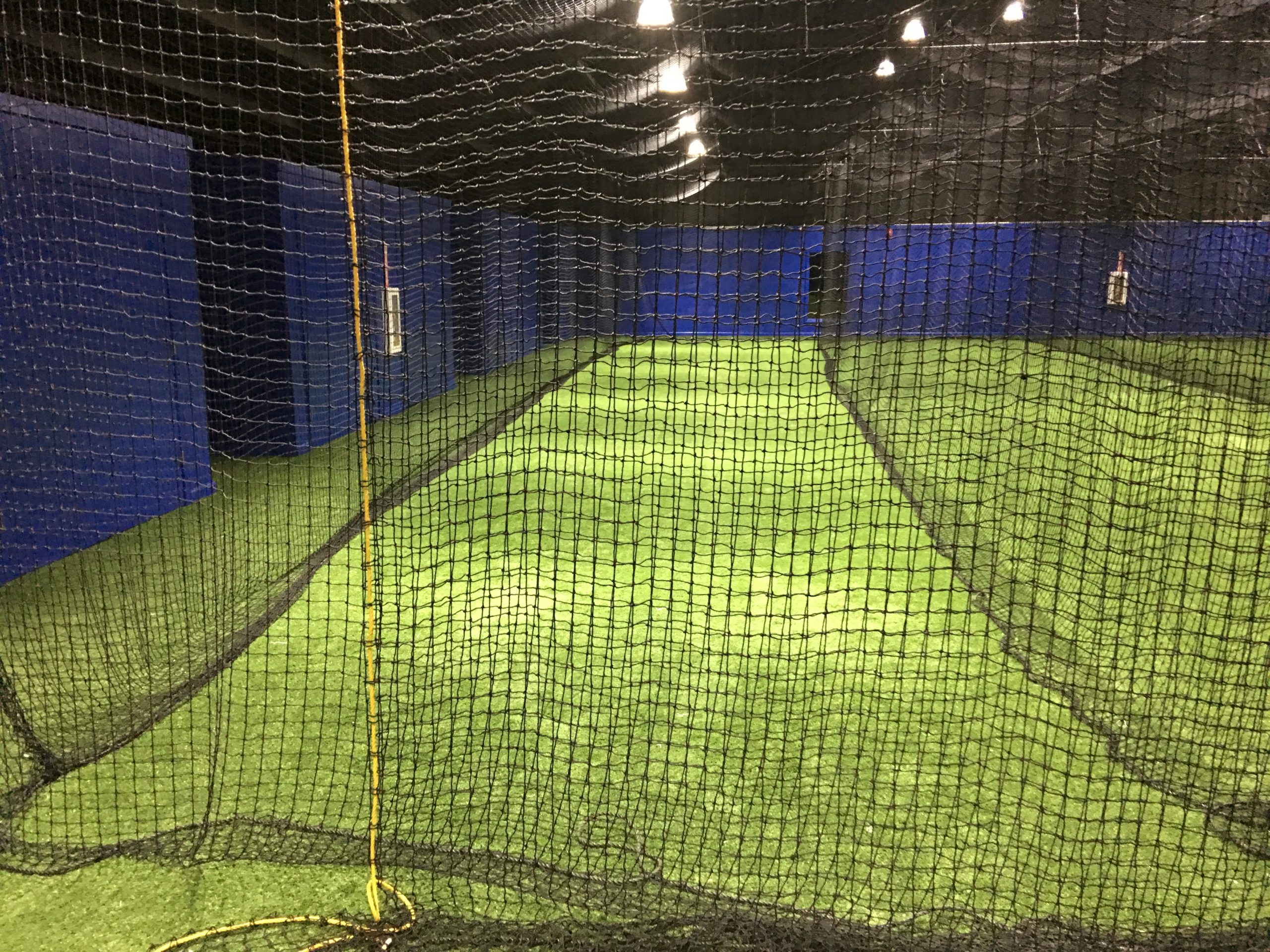 indoor batting cage for artificial turf