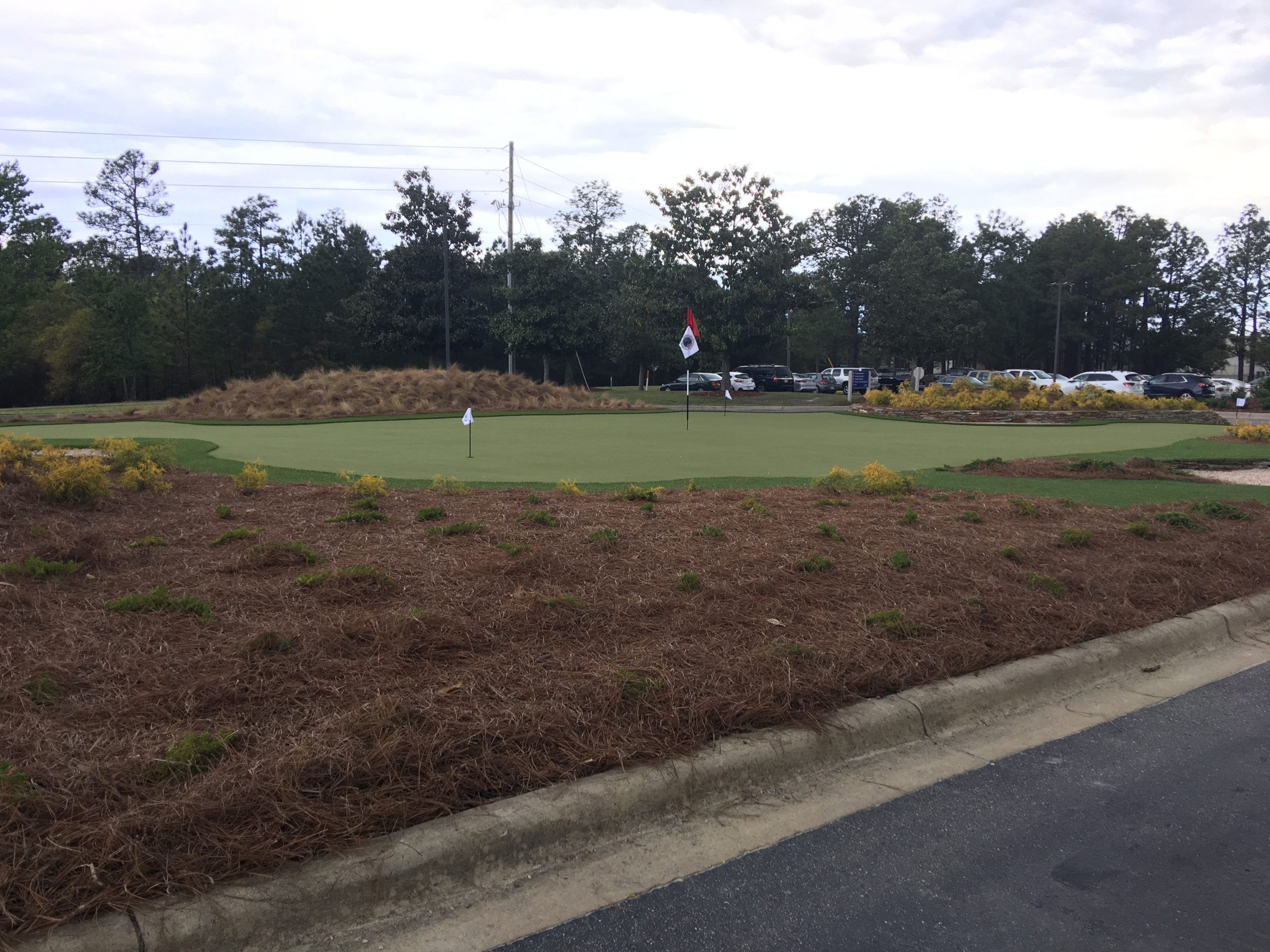 putting green in commercial space near me