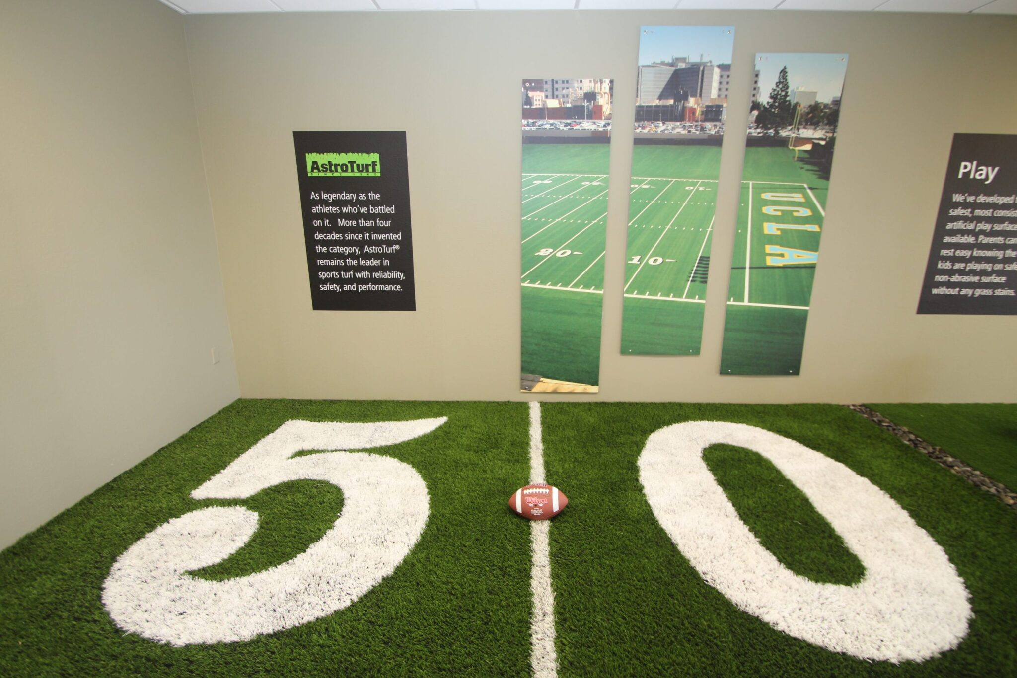 showroom, artificial grass