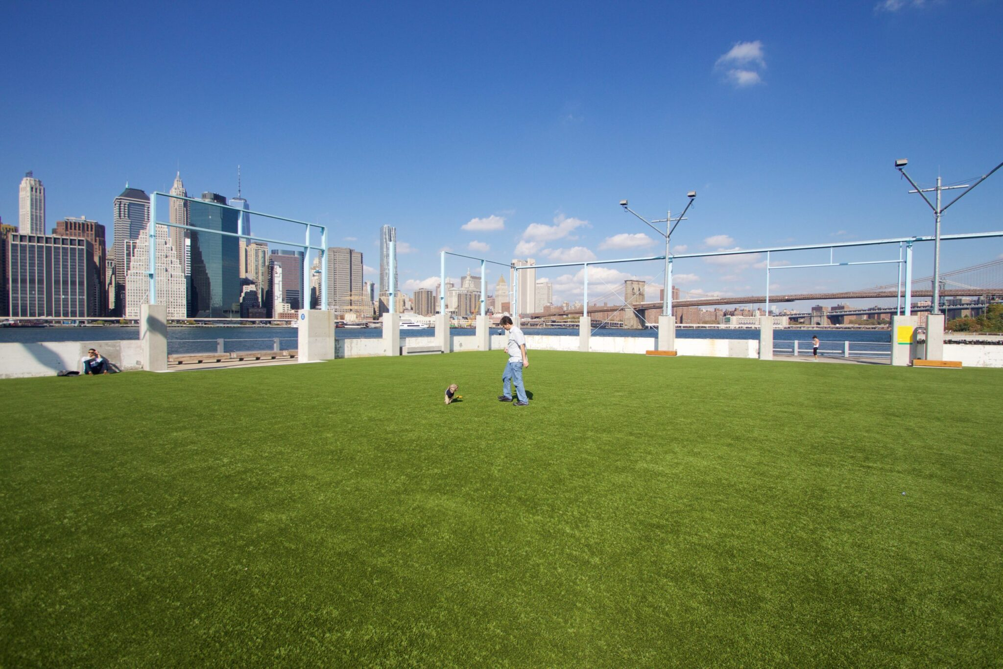 pet turf in the city