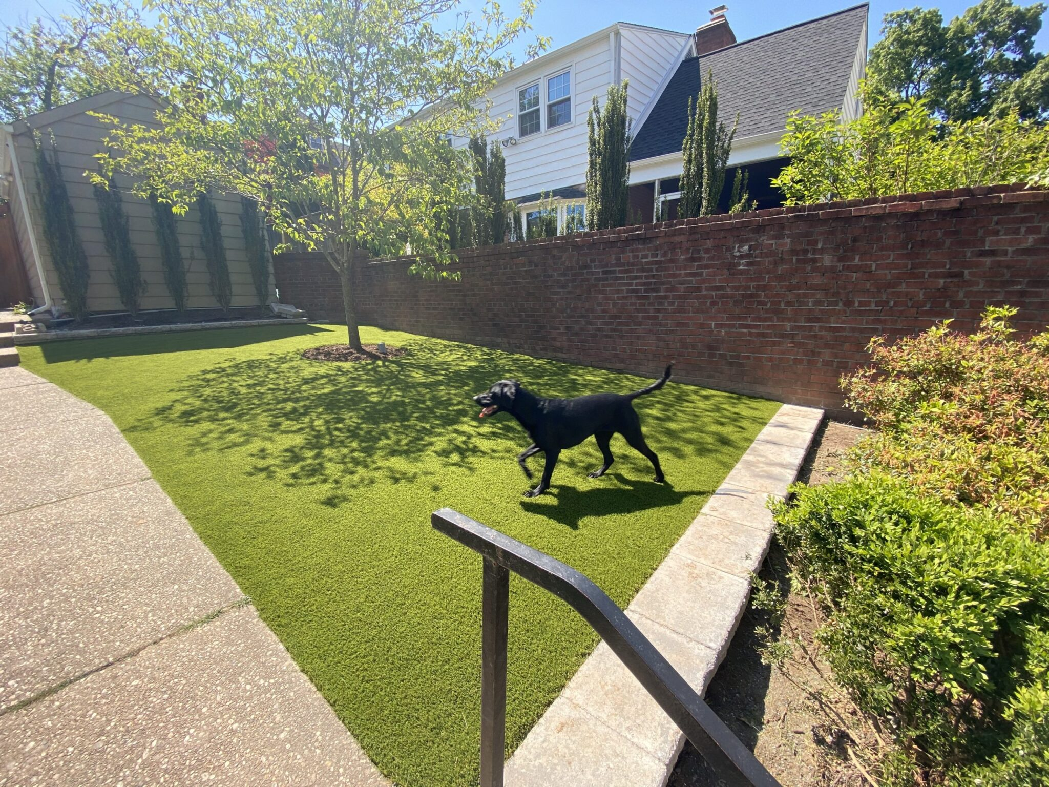 residential home turf for pet