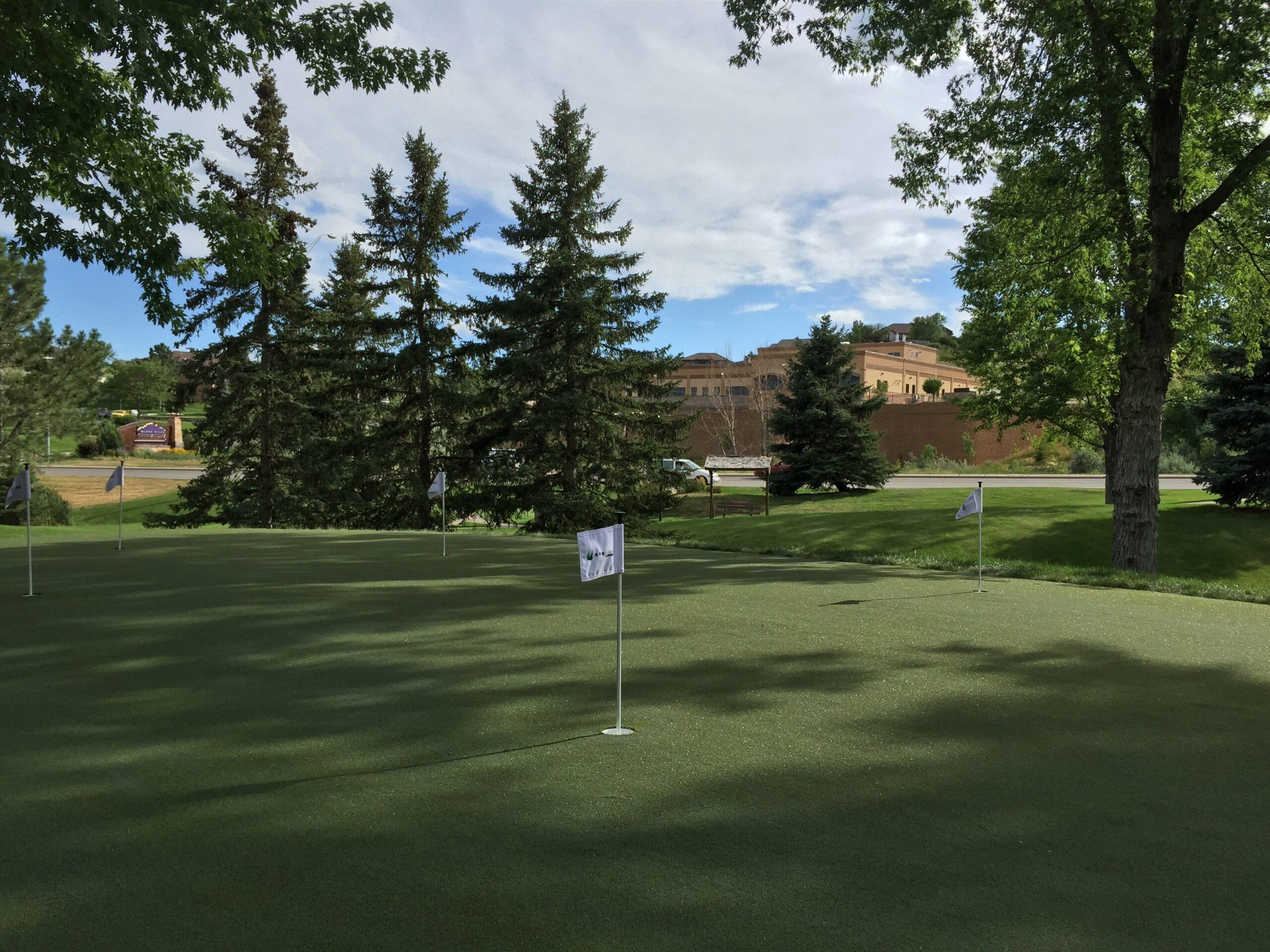 commercial putting green, artificial grass
